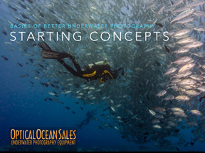 strating concepts of underwater photography