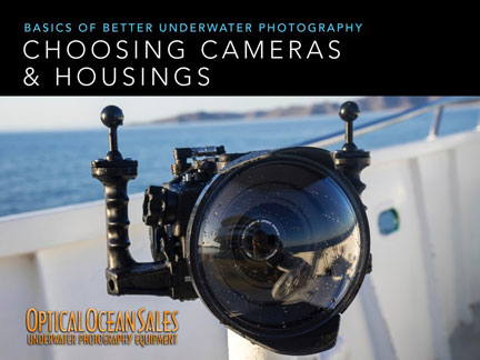 Choosing an Underwater Camera