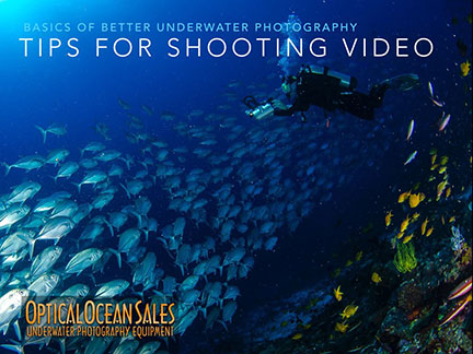 Video Tips for Underwater photographers